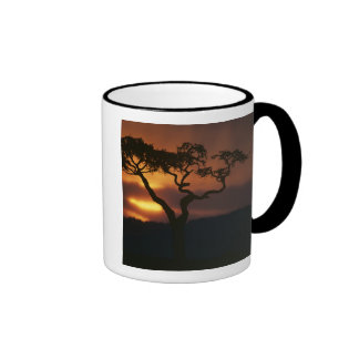 Africa, Kenya, Masai Mara Game Reserve, Setting Ringer Mug