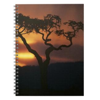 Africa, Kenya, Masai Mara Game Reserve, Setting Spiral Notebook