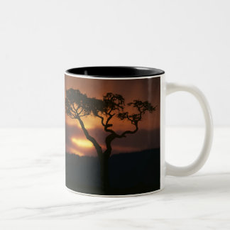 Africa, Kenya, Masai Mara Game Reserve, Setting Two-Tone Coffee Mug