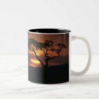 Africa, Kenya, Masai Mara Game Reserve, Setting Two-Tone Coffee Mug