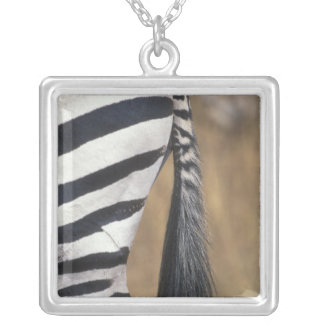 Africa, Kenya, Masai Mara Game Reserve, Silver Plated Necklace