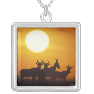Africa, Kenya, Masai Mara Game Reserve, Topi Silver Plated Necklace