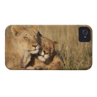 Africa, Kenya, Masai Mara Game Reserve, Young iPhone 4 Case
