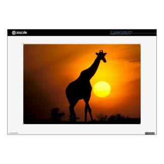 """Africa, Kenya, Masai Mara. Giraffe (Giraffe 15"""" Laptop Decal"""