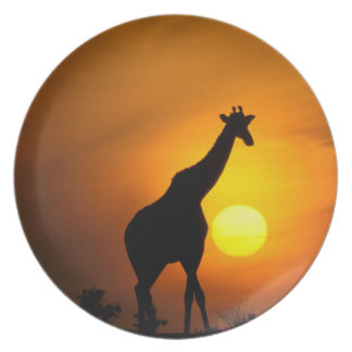 Africa, Kenya, Masai Mara. Giraffe (Giraffe Plate