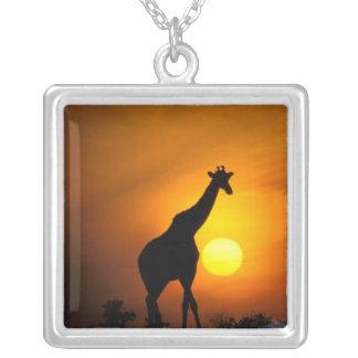 Africa, Kenya, Masai Mara. Giraffe (Giraffe Silver Plated Necklace