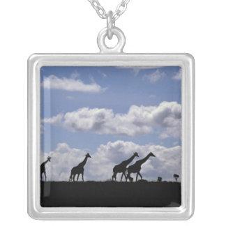 Africa,Kenya,Masai Mara. Giraffes (Giraffa Square Pendant Necklace