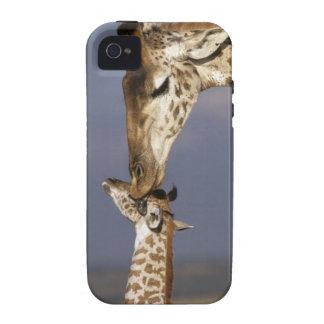 Africa Kenya Masai Mara Giraffes Giraffe Case-Mate iPhone 4 Cases