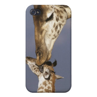 Africa Kenya Masai Mara Giraffes Giraffe iPhone 4/4S Covers