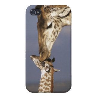 Africa Kenya Masai Mara Giraffes Giraffe iPhone 4/4S Cases