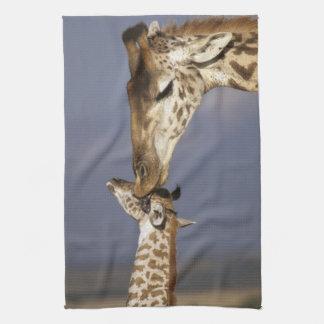 Africa, Kenya, Masai Mara. Giraffes (Giraffe Kitchen Towel
