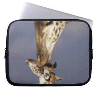 Africa, Kenya, Masai Mara. Giraffes (Giraffe Laptop Computer Sleeves