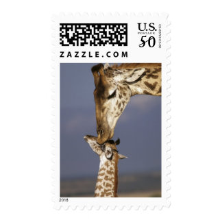Africa, Kenya, Masai Mara. Giraffes (Giraffe Postage