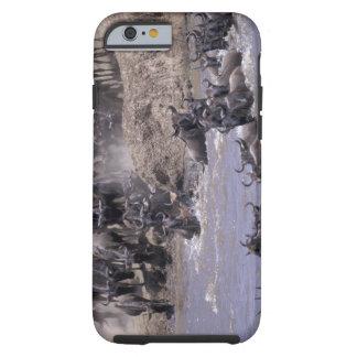 Africa, Kenya, Masai Mara National Park. Tough iPhone 6 Case