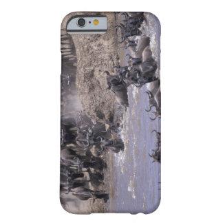 Africa, Kenya, Masai Mara National Park. Barely There iPhone 6 Case