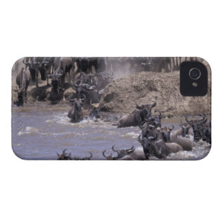 Africa, Kenya, Masai Mara National Park. iPhone 4 Covers