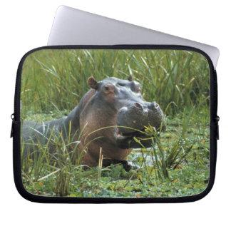 Africa, Kenya, Masai Mara NR. A mother hippo and Laptop Computer Sleeves