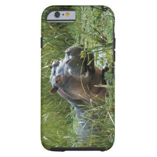 Africa, Kenya, Masai Mara NR. A mother hippo and Tough iPhone 6 Case