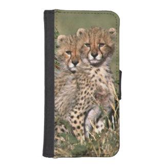 Africa; Kenya; Masai Mara; Three cheetah cubs Phone Wallet