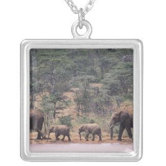 Africa, Kenya, Nanyuki, Mpala. African Custom Jewelry