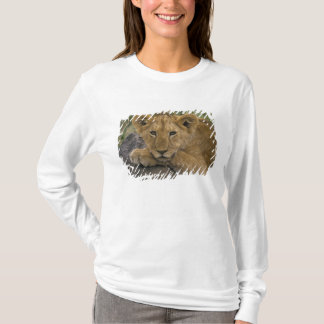 Africa, Kenya. Portrait of a lion. T-Shirt