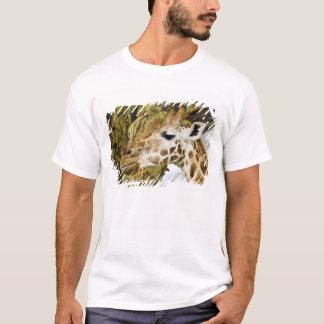 Africa. Kenya. Rothschild's Giraffe at Lake 3 T-Shirt