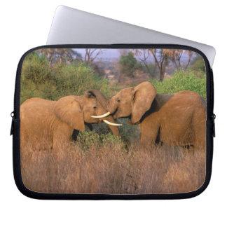 Africa, Kenya, Samburu. Elephant challenge Computer Sleeve
