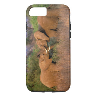 Africa, Kenya, Samburu. Elephant challenge iPhone 8/7 Case