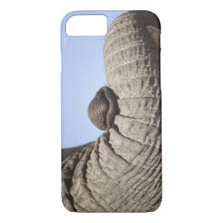 Africa, Kenya, Samburu. Elephant trunk iPhone 7 Case