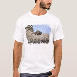 Africa, Kenya, Samburu. Elephant trunk T-Shirt