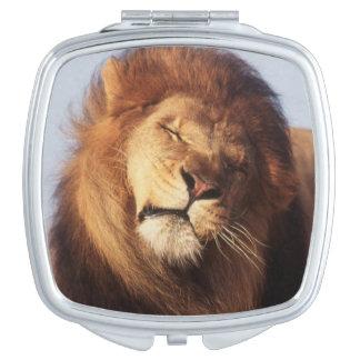 África, león africano masculino (Panthera Leo) Espejos Maquillaje
