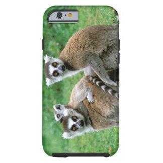 Africa Madagascar Antananarivo Tsimbazaza iPhone 6 Case