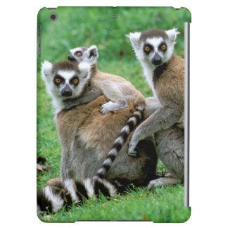 Africa, Madagascar, Antananarivo, Tsimbazaza iPad Air Cases