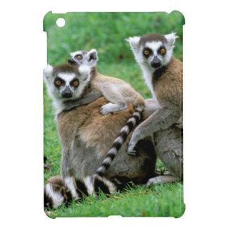 Africa, Madagascar, Antananarivo, Tsimbazaza iPad Mini Cover