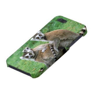 Africa Madagascar Antananarivo Tsimbazaza iPhone 5/5S Covers