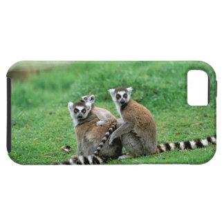 Africa, Madagascar, Antananarivo, Tsimbazaza iPhone SE/5/5s Case