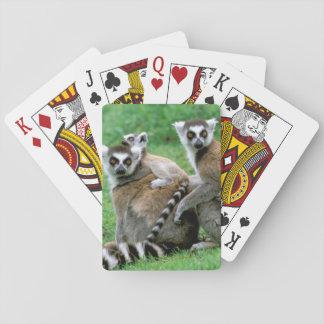 Africa, Madagascar, Antananarivo, Tsimbazaza Playing Cards