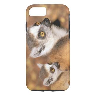 Africa, Madagascar, Berenty Private Reserve. iPhone 7 Case