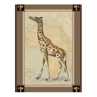 Africa Map and a Giraffe Post Card