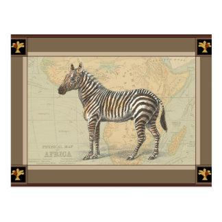 Africa Map and a Zebra Postcard