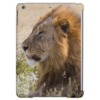 Africa, Namibia, Etosha National Park 2 iPad Air Cover