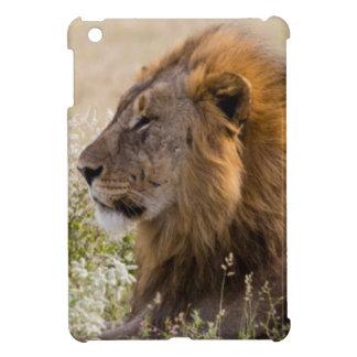 Africa, Namibia, Etosha National Park 2 iPad Mini Cover