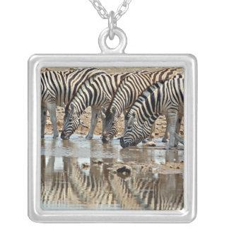 Africa, Namibia, Etosha NP. Burchell's Zebra Square Pendant Necklace