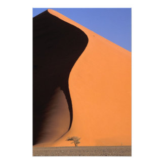 Africa Namibia Evening light on dunes Photographic Print