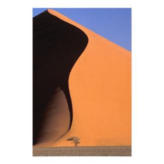 África, Namibia, igualando la luz en las dunas, Impresiones Fotográficas