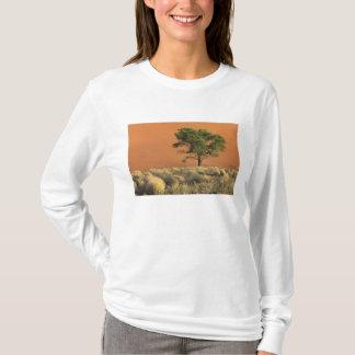 Africa, Namibia, Namib National Park, Sossusvlei T-Shirt