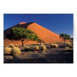 Africa, Namibia, Namib-Naukluff Park, Sossosvlei Cards