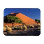 Africa, Namibia, Namib-Naukluff Park, Sossosvlei Flexible Magnet