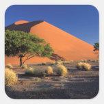 Africa, Namibia, Namib-Naukluff Park, Sossosvlei Stickers