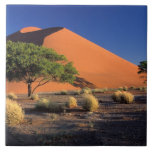 Africa, Namibia, Namib-Naukluff Park, Sossosvlei Ceramic Tile